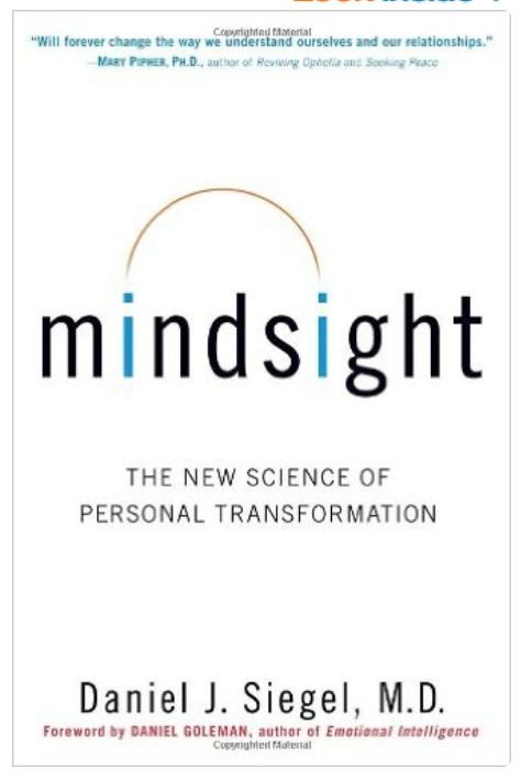 Mindsight by Dan Seigel